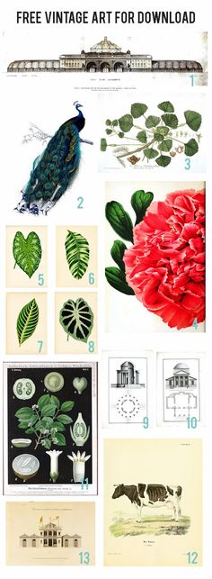 Rambling Renovators | Free Vintage Art for Download #art #download. Laundry symbol chart here too.