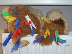 Activity for kids - Sorting: Pinned dog