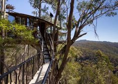 The Secret Treehouse is nestled high in the tree-tops, in 600 acres of private wilderness in the Blue Mountains of Bilpin, New South Wales, Australia. Glamping, Blue Mountains Australia, Vacation Games, Vacation Destinations, Airbnb House, Cool Tree Houses, Cheap Houses, Visit Australia, Sydney Australia