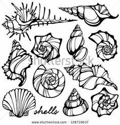 Seashell Tattoos, Ocean Tattoos, Body Art Tattoos, Rib Tattoos, Tatoos, Shell Drawing, Tatto Love, Geniale Tattoos, Shell Art