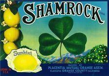 *Original* CAMBRIA Placentia Eagle Torches Lemon Crate Label NOT A COPY!!