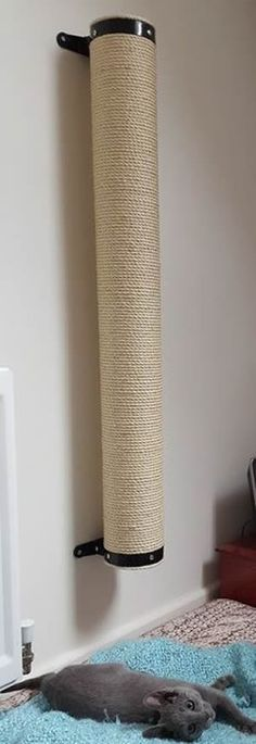 XL Wall Mounted Cat Scratching Post UK Handmade Feedback Coloring, Different . - Self-made-Möbel - Diy Jouet Pour Chat, Diy Cat Toys, Cat Towers, Ideal Toys, Cat Playground, Cat Scratcher, Cat Room, Cat Condo, Pet Furniture
