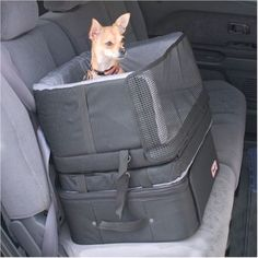 Stow and Go Dog Travel Car Seat | by Snoozer - can reduce car sickness by letting your small dog see out the window. Remember to tether your dog with a harness to keep it safe while driving.