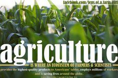 www.facebook.com/lens.of.a.farm.girl | Copyright Erin Ehnle 2014