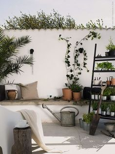 because it's Ikea. (my) unfinished home: just because it's Ikea.(my) unfinished home: just because it's Ikea. Ikea Outdoor, Outdoor Plants, Outdoor Spaces, Outdoor Gardens, Outdoor Dining, Outdoor Decor, Balcony Plants, Rustic Home Design, Casa Real