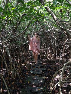 Cenote..Exploring