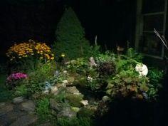 Night time pond