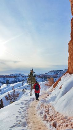 What's it like to winter hike the hoodoos in Bryce Canyon on Queens Garden Trail? Cheap Winter Vacations, Vacations In The Us, Pumpkin Recipes, Fall Recipes, Hiking Essentials, Winter Hiking, Winter Travel, Winter Photos, Pop Culture Halloween Costume