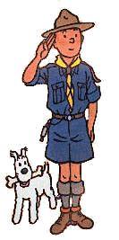 Tintin as a scout