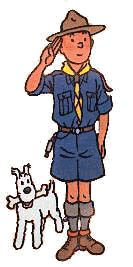Tintin as a scout
