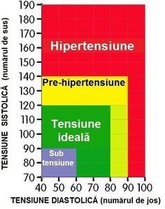 6 Amazing Cool Tricks: Blood Pressure Causes gestational hypertension diet.How To Take Blood Pressure Manually. Essential Oil Blood Pressure, Natural Blood Pressure, Blood Pressure Medicine, Reducing High Blood Pressure, Normal Blood Pressure, High Blood Pressure Chart, Hypertension Recipe, Gestational Hypertension, Pulmonary Hypertension