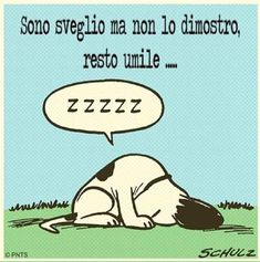 Popular Tutorial and Ideas Snoopy Love, Snoopy And Woodstock, Italian Humor, Peanuts Snoopy, Day For Night, Positive Life, Girl Humor, Good Mood, I Am Awesome