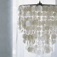 seashell chandeliers | Modern chandeliers for your coastal interior design | Modern Seashell ...
