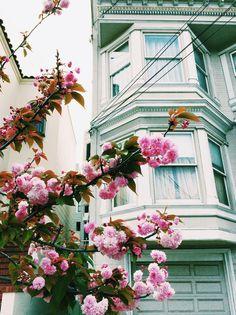 こんなカワイイ街だったなんて!サンフランシスコを再発見する魅力がいっぱい詰まったフォトブック