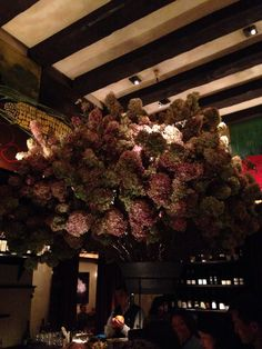The new flowers at Gramercy Tavern are maybe the prettiest I've ever seen them. Wish a certain someone could have seen them with me. (Took it myself).