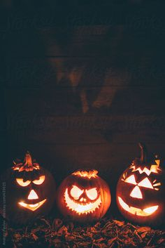 halloween aesthetic - Three Illuminated carved pumpkins vertical by Andrey Pavlov - Halloween Wallpaper Iphone, Halloween Backgrounds, Fall Wallpaper, Spooky Halloween, Halloween Pumpkins, Happy Halloween, Halloween Decorations, Halloween 2020, Pumpkin Carving
