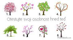 osobnost-stromy Reiki, Humor, Decoration, Acupuncture, Decor, Humour, Funny Photos, Decorations, Decorating
