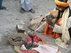 See a snake charmer in India #bucketlist #travel