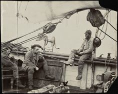 Swear Like a Sailor Old Pictures, Old Photos, Old Sailing Ships, Vintage Sailor, Merchant Navy, Sea Captain, Pirate Life, Tall Ships, Vintage Photographs