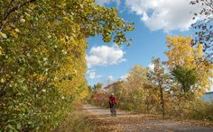 Minneapolis/St. Paul: While plenty of locals happily pedal around town during the depths of winter, for most people, fall is the last hurrah for bicycling and jogging around the lakes.