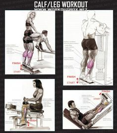 Calf Leg Workout - Healthy Fitness Exercises Gym Low Body
