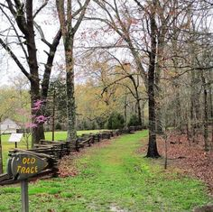 During the spring months, the scenic Natchez Trace Parkway blooms into full beauty. See the best places along the trace to see wildflowers. Spring Wildflowers, Spring Flowers, Wild Flowers, Dogwood Trees, Flowering Trees, Spring Months, Spring Time, Spring Scenery, Natchez Trace