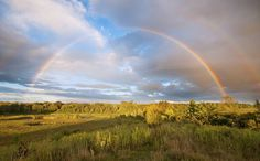Click to see more amazing photos of the double rainbow that graced the sky in Ypsilanti, Michigan!