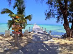 ✮ Rum Point - My favorite place in the Cayman Islands
