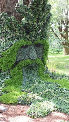 frametoframe.ca wp-content uploads 2013 08 Spirits-of-the-Wood-The-Green-Man-closeup-Mosaiculture-Montreal-Botancial-Gardens.jpg