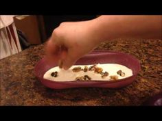 pancakes in 2 1/2 minutes!!! Tupperware Breakfast maker - YouTube