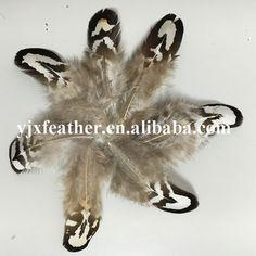 hotsale natural pheasant feathers