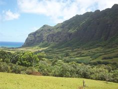 My favorite place in the world Honululu/Hawaii