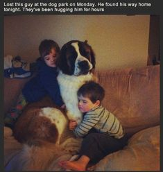 16 Heartwarming Photos Of Lost Dogs Reunited With Their Families #BigDog #dogsfunnywithcaptions