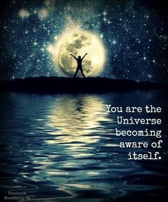 You are the universe.....it's an incredible thought...the universe made conscience beings that could be awe-inspired by it's glory