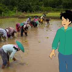 Flat Lottie oversees farmers plant rice in Southeast Asia