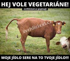 Hej, vole, vegetariáne… – Zvrhlíci XXL – Bez cenzury