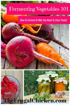 Want to try fermenting vegetables but afraid or confused where to begin? Learn to ferment veggies in this step-by-step system. From FrugalChicken