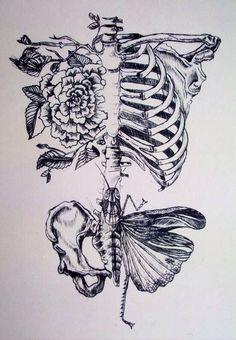 Beautiful bones and flower drawing.