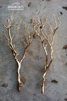 golden branches!! would be so cute in white or black vase