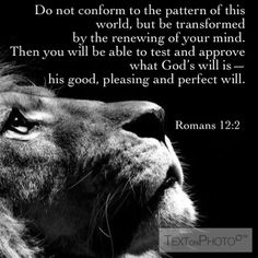 Romans 12:2- favorite verse! ❤️