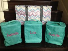 "This set will live in your car. A customer got each of her daughters a Single Organizer with their names on them. She filled it with ""extras"" - set of clothes, shoes, diapers, etc.  She is always out and about and wishing she had an extra shirt when one of her ""angels"" spills an entire drink on herself or when she ""thought"" she had extra diapers and wipes, but she's out or when there's a last minute sleepover! It can also be used to pack their stuff for a weekend getaway. One bag to haul…"