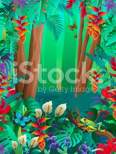 tropical butterflies and tree frog in the rainforest royalty-free stock vector art