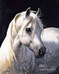 Drawing Pencil Portraits - Les chevaux Discover The Secrets Of Drawing Realistic Pencil Portraits Horse Drawings, Animal Drawings, Pencil Drawings, Drawing Animals, Portrait Au Crayon, Pencil Portrait Drawing, Painted Horses, Horse Artwork, Horse Face