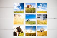 Prairie Landscape Nature Photography - Colorful Rustic Modern - 5x5 Set of Nine -  by ACloverAndOneBee
