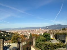 overview of firenze