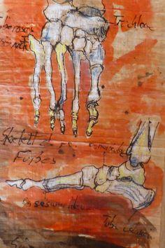 ORIGINAL Anatomic foot.