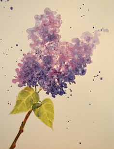 Lilac Watercolor Paintings | Art, Fine Art-Watercolor Painting of Purple Lilac Flowers