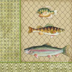 I uploaded new artwork to plout-gallery.artistwebsites.com! - 'Catch of the Day-C' - http://plout-gallery.artistwebsites.com/featured/catch-of-the-day-c-jean-plout.html via @fineartamerica