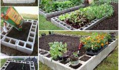 Não é toda a gente que tem a sorte de ter um jardim e é por esta razão que as pessoas encontram outras soluções de jardinagem que os deixam igualmente feli