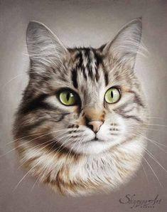 portrait animalier d'un chat tigré aux yeux vert, Pantoufle, réalisé avec la technique du pastel sec cute food diy garten witzig Pastel Drawing, Pastel Art, Cat Drawing, Pastel Portraits, Pet Portraits, Animal Paintings, Animal Drawings, Drawing Animals, Cat Photography